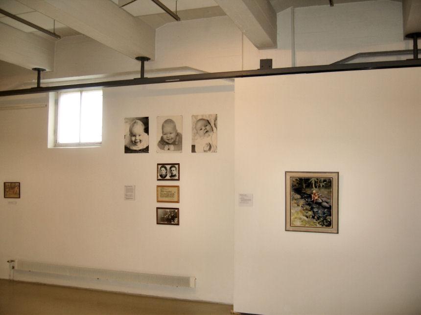 Kotien Taide - näyttely 2009 kesällä
