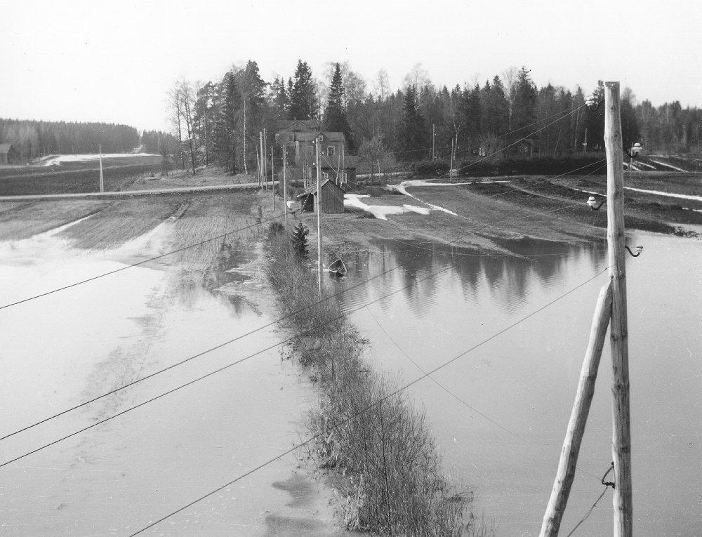 Vuodelta 1957 kuva taloltamme Vanhankyläntielle ennen säännöstelypadon rakentamista. Kahden viikon ajan vain veneellä saattoi kulkea pihasta tielle.